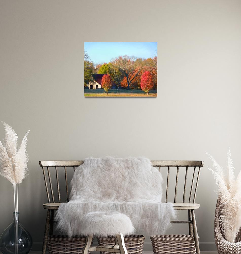 """""""Autumn In The Country""""  (2009) by photographybydonna"""