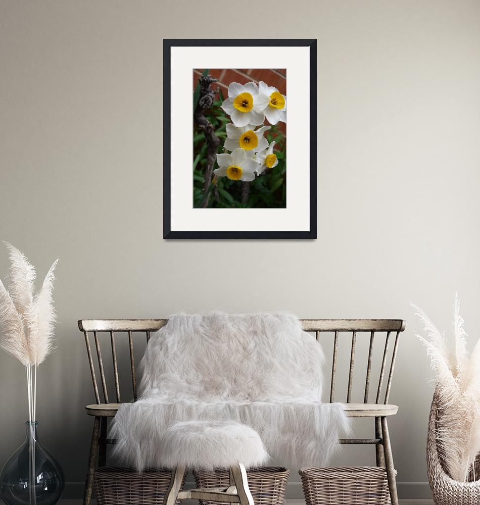 """""""Yellow and White Flower""""  (2009) by montanez"""