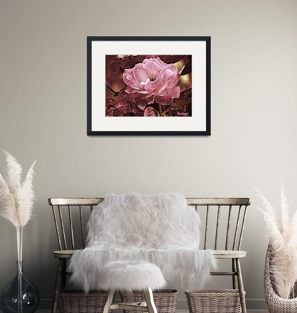 """""""Pink Beauty Rose""""  (2010) by Attentiongetters"""