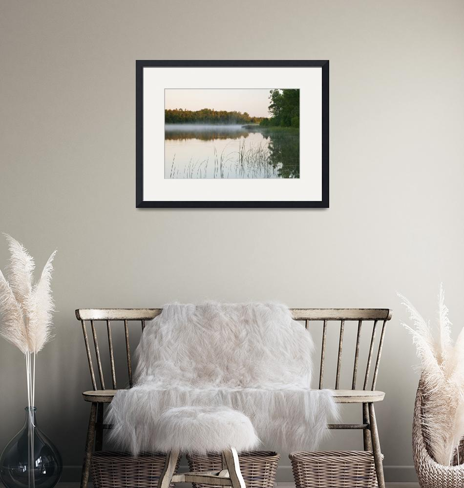 """""""Morning mist over Mink River estuary""""  by Panoramic_Images"""