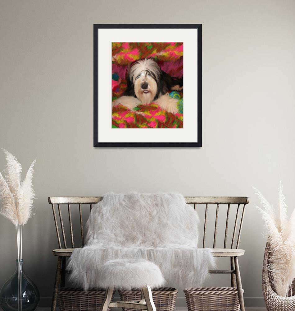 """""""Bearded Collie posing""""  (2011) by kring"""