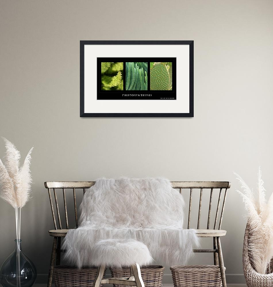"""""""Photosynthesis - Green Tryptych""""  by Eileen"""