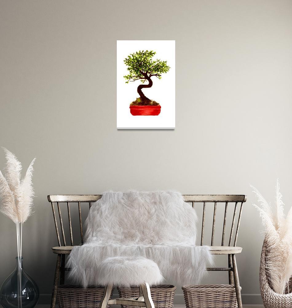 """Chinese Elm Bonsai Tree""  (2011) by vigliotti"