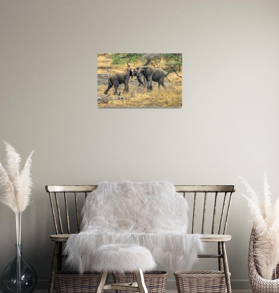 """""""East African Elephants at Play""""  (2011) by mjphoto-graphics"""