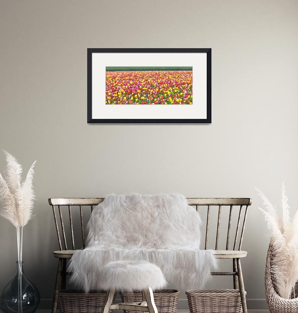 """""""Blanket of tulips""""  (2010) by Tapestry"""