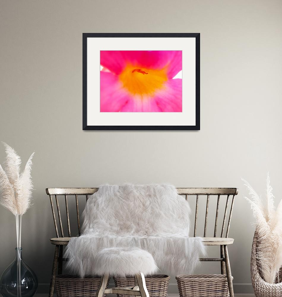 """""""Heart of Pink Trumpet Flower-2""""  (2014) by AmbientCreations"""