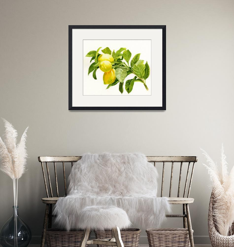 """""""Lemons on a Branch""""  (2014) by Pacific-NW-Watercolors"""