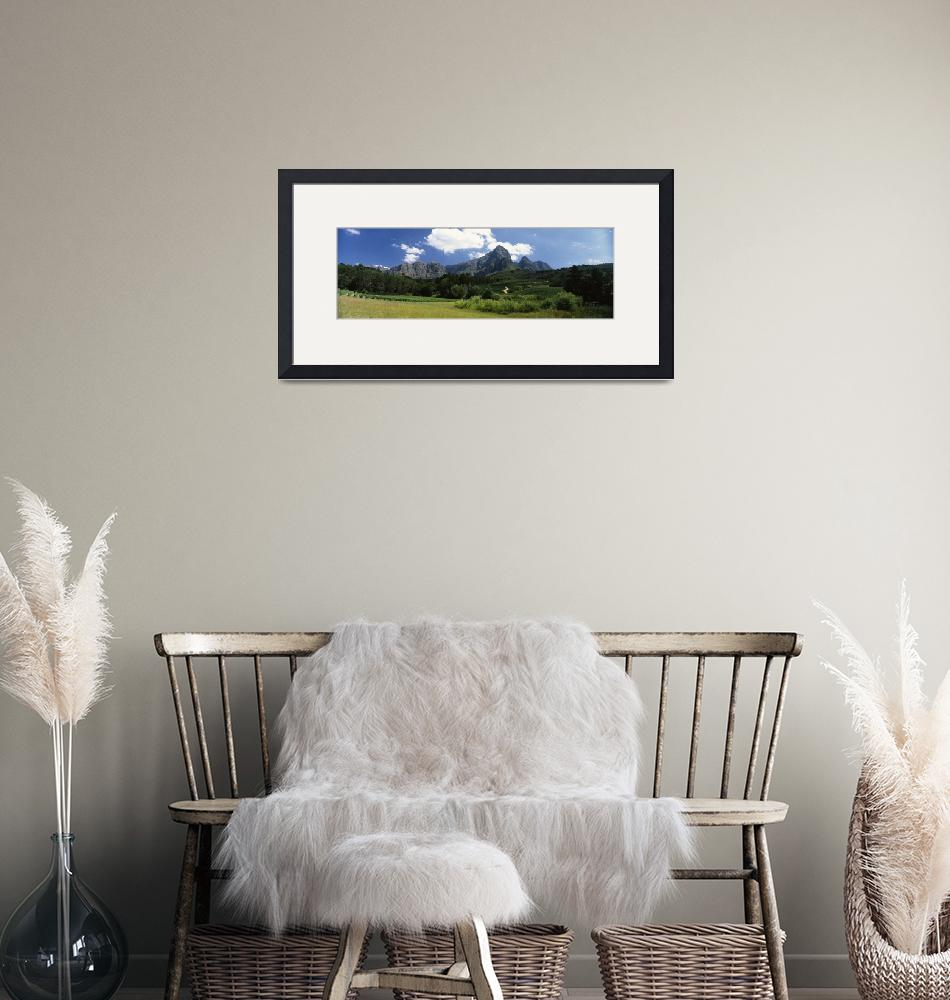"""""""Vineyard with Groot Drakenstein mountain range in""""  by Panoramic_Images"""
