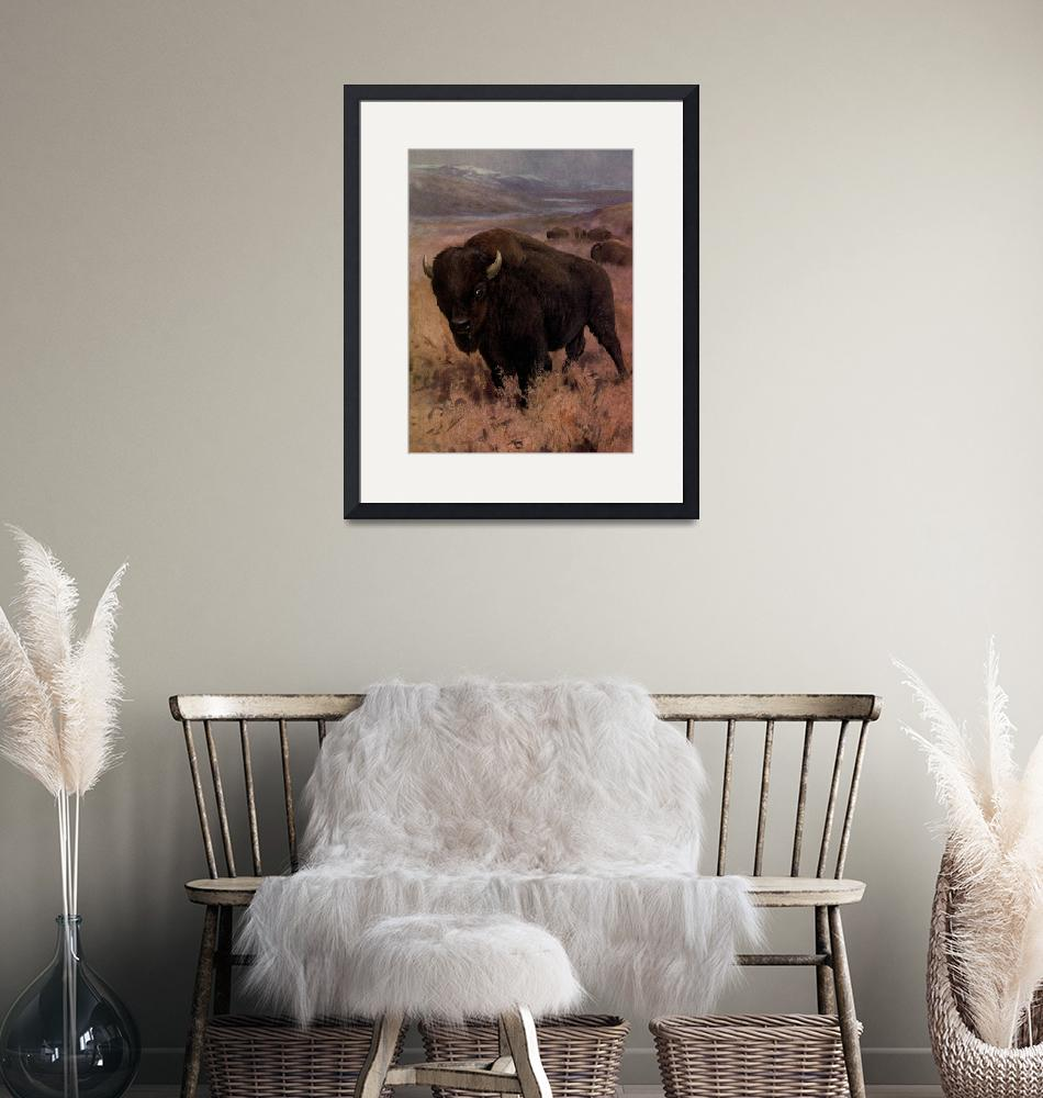"""""""Vintage American Buffalo Painting (1909)""""  by Alleycatshirts"""