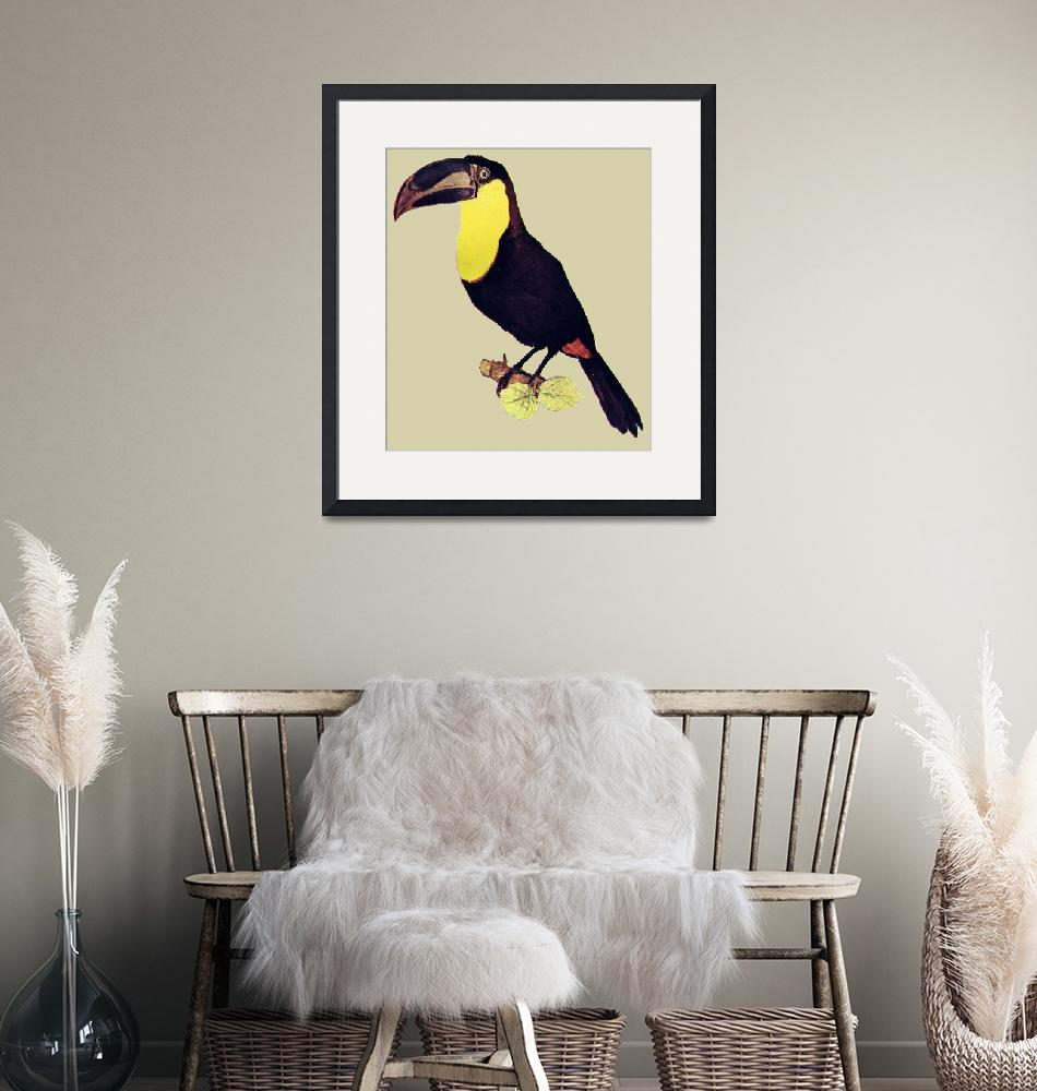 """""""toucan""""  (2010) by birthdaygifts"""