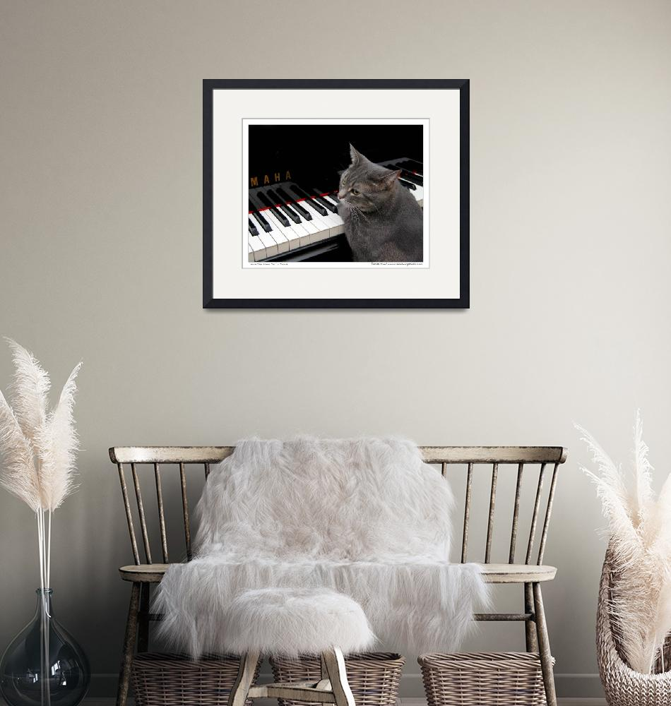 """Nora The Piano Cat™ - n0013""  (2008) by ravenswingstudio"