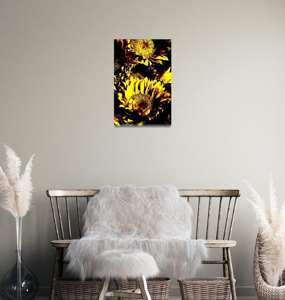 """Sunflowers: Yellow Black 0290""  by vicki-pix"