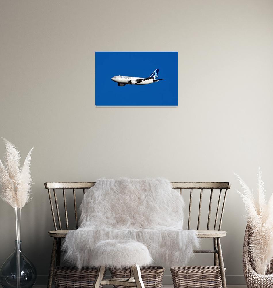 """SATA A310, CS-TGU Approaching""  (2009) by JoaoPonces"
