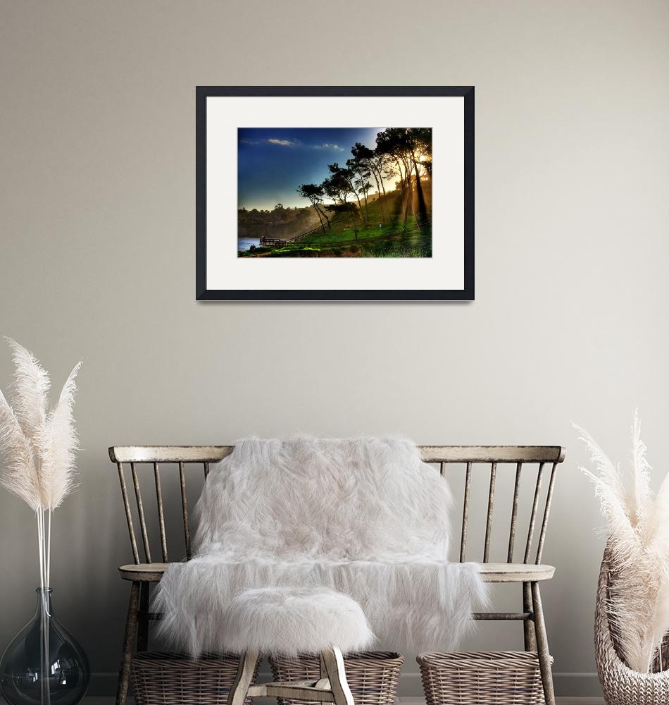 """""""La Jolla Lookout"""" (2009) by colbertimages"""