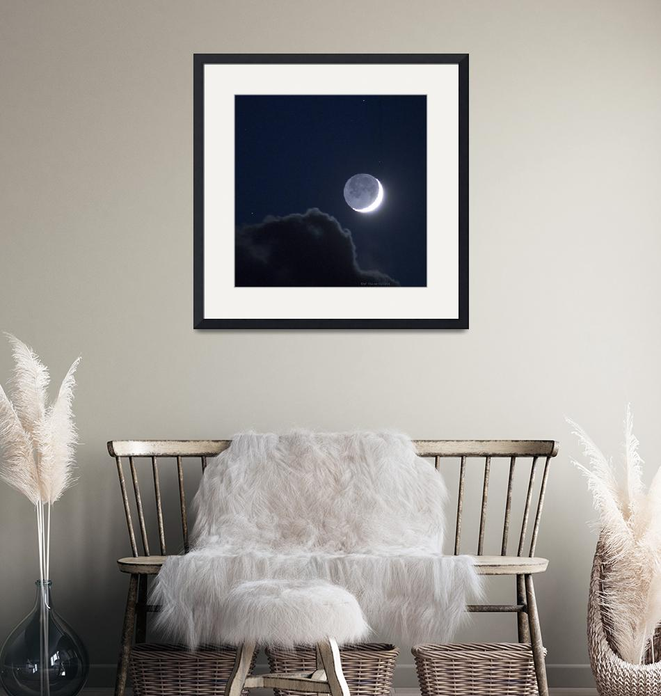 """""""Moon Cry""""  (2014) by ralphnelsen"""