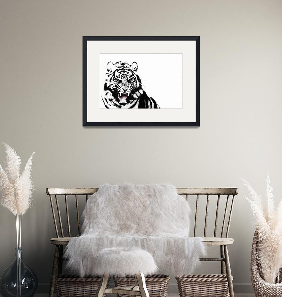 """""""The White Tiger""""  by mark-rogan"""