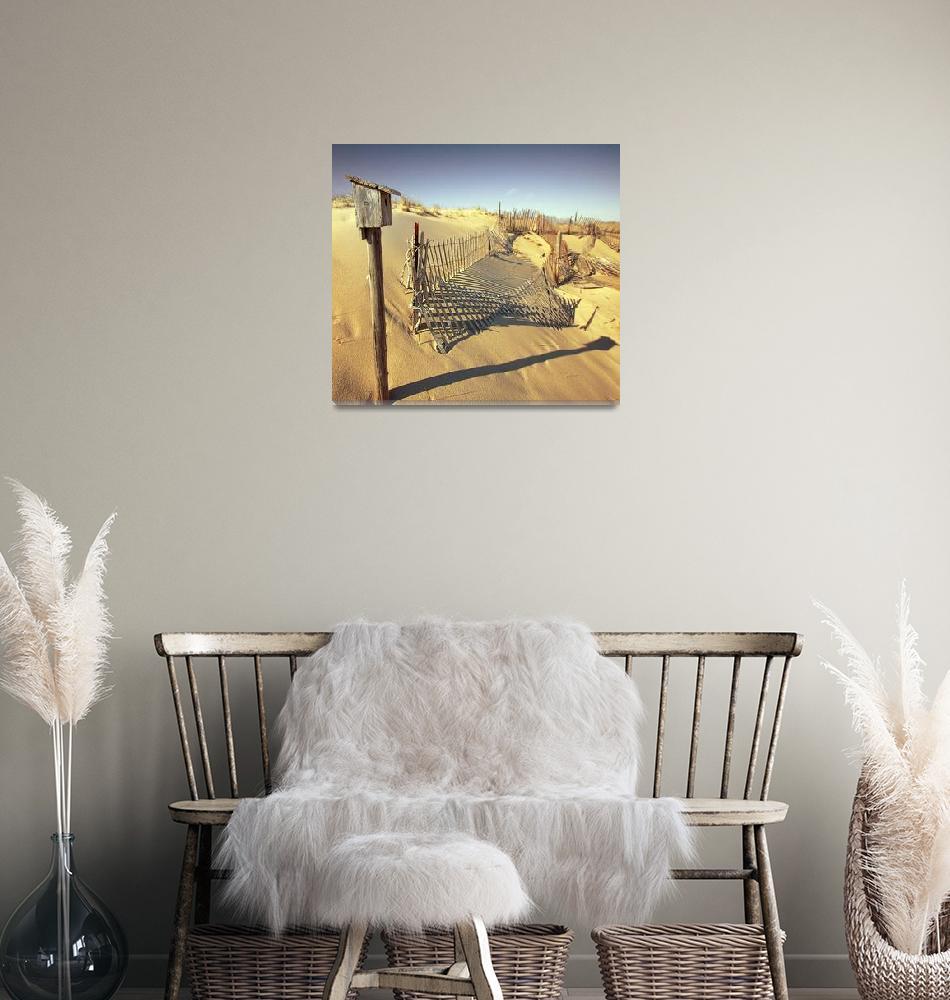"""Cape Cod Dune Fence""  (2009) by dapixara"