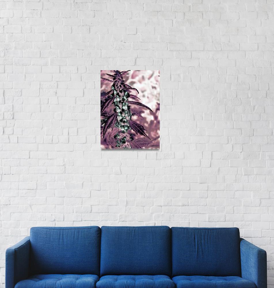 """Floristic Art""  (2012) by MissDawn"