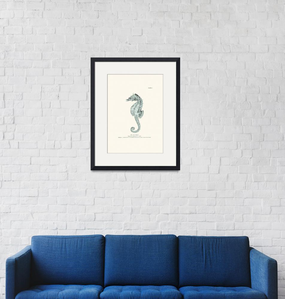 """Vintage sea horse engraving poster""  (2012) by Lebonvintage"