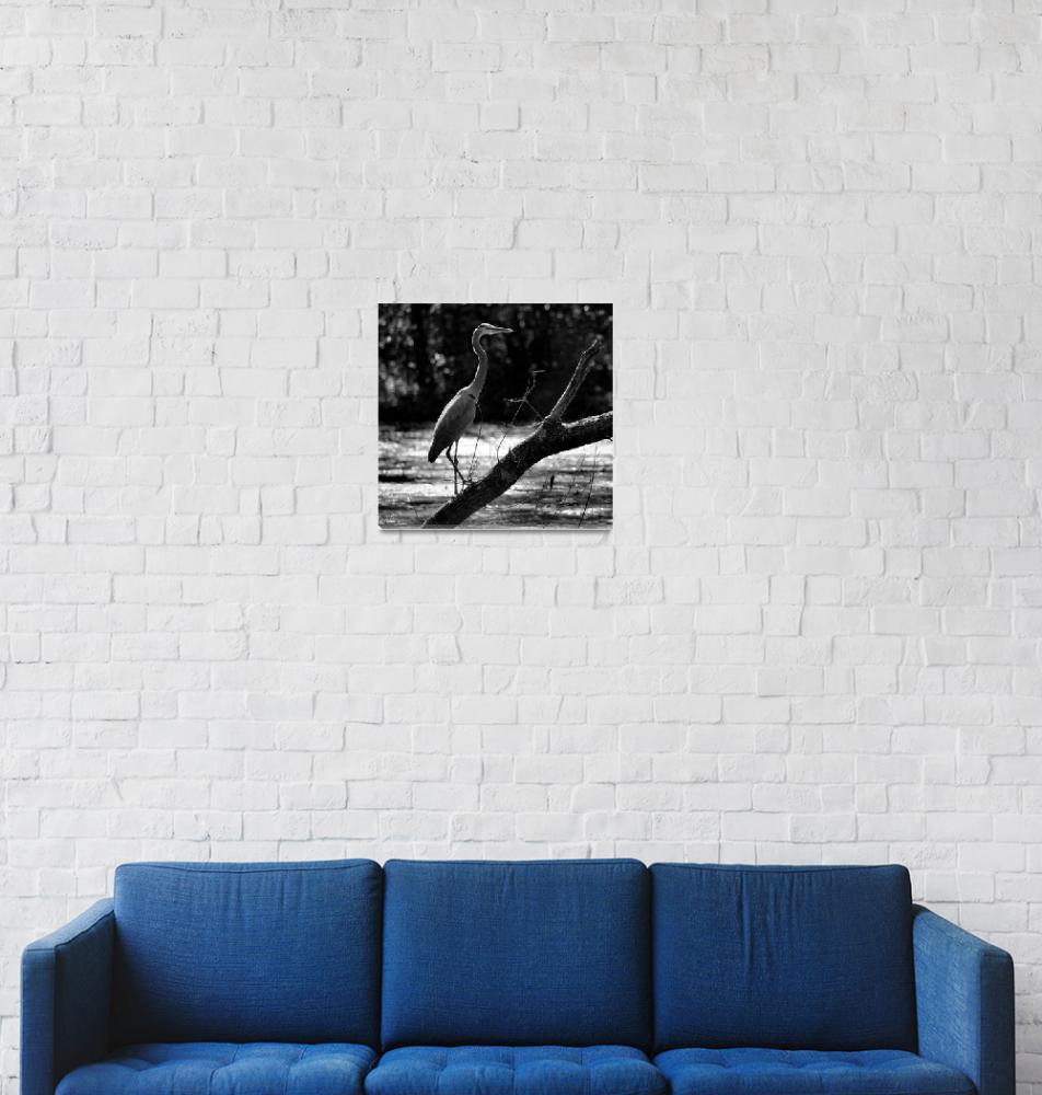 """Great Blue Heron Black and White""  (2016) by KsWorldArt"