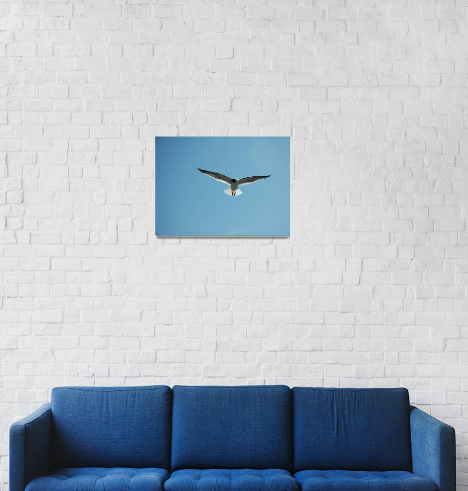 """In Flight""  (2011) by ImagesbyMauveline"