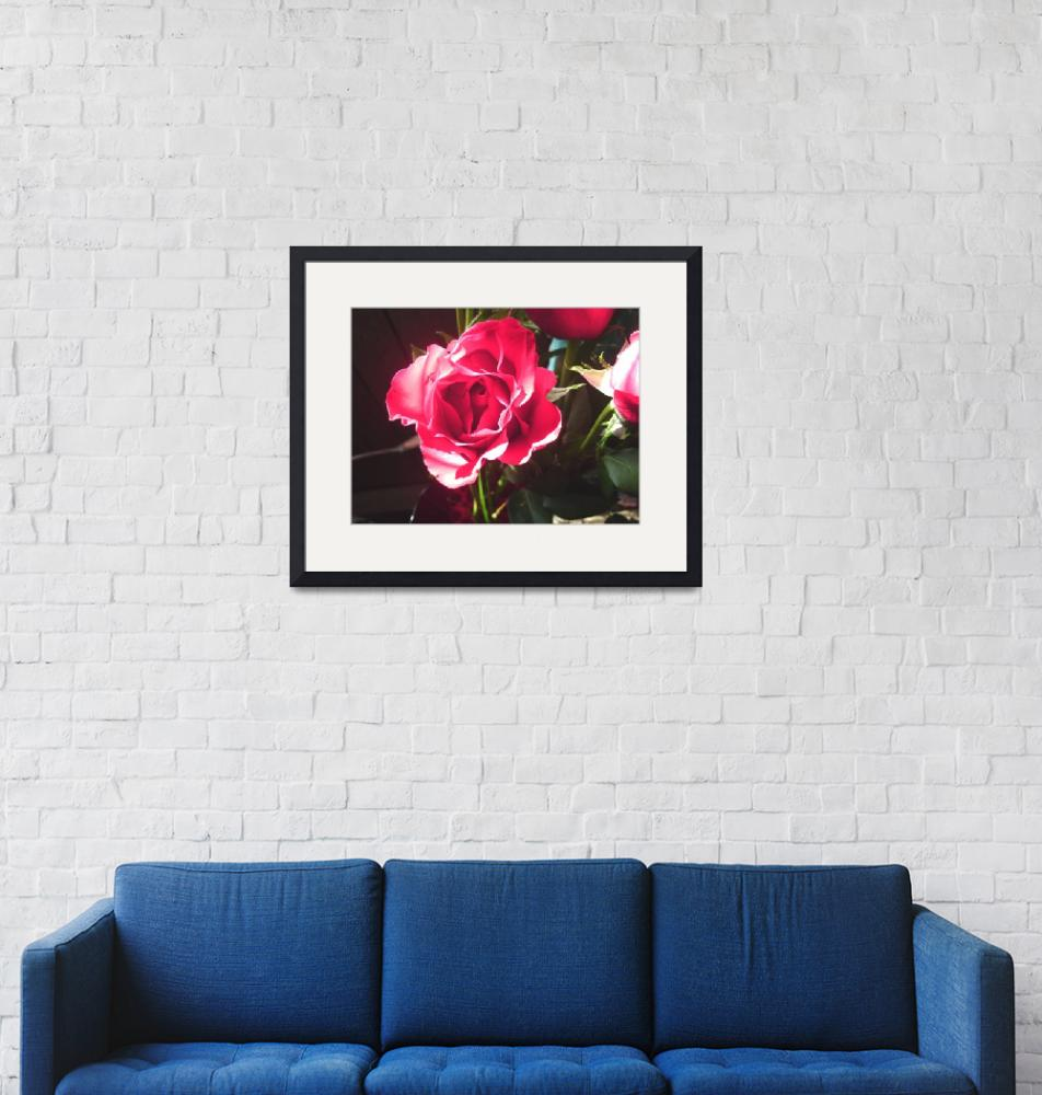"""""""A Rose From Heaven""""  (2010) by MariedMan"""