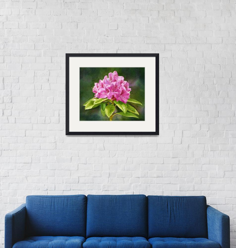 """""""Magenta Colored Rhododendron Dark Background""""  (2015) by Pacific-NW-Watercolors"""