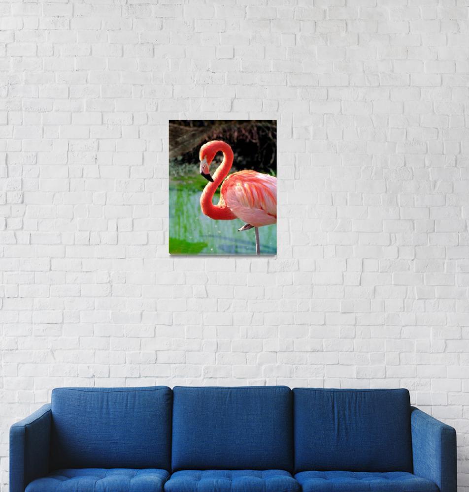 """""""Flamingo Neck""""  by buffaloworks"""