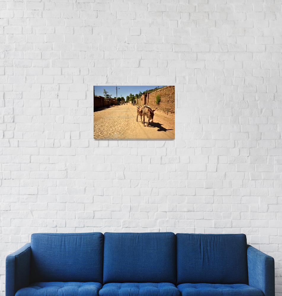 """Lone donkey walking down a street, Aksum Ethiopia""  (2018) by Mickcarr"