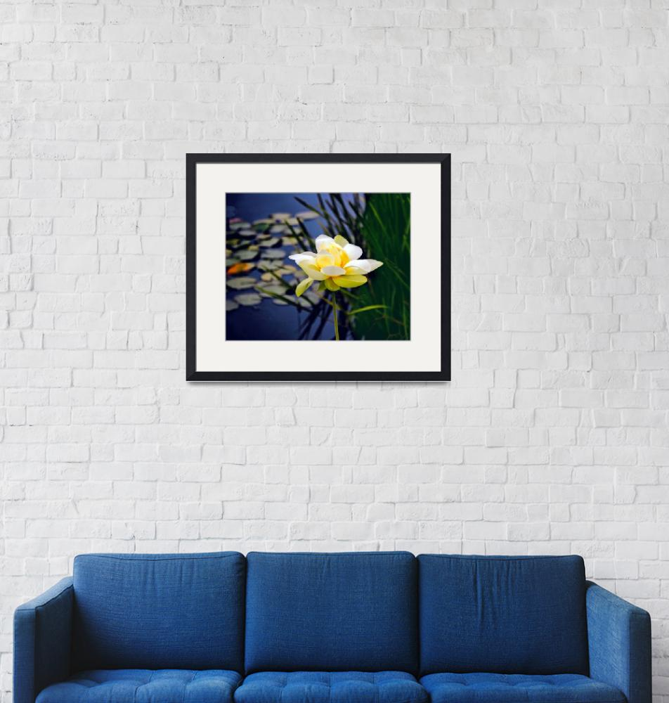 """""""Lovely Lotus"""" (2017) by JessicaJenney"""
