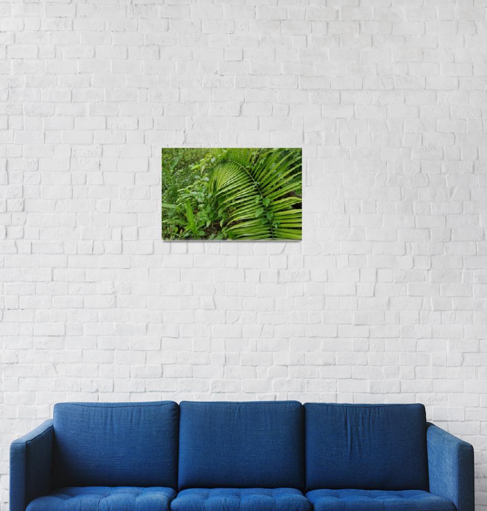 """jungle""  (2012) by erinlanzendorfer"