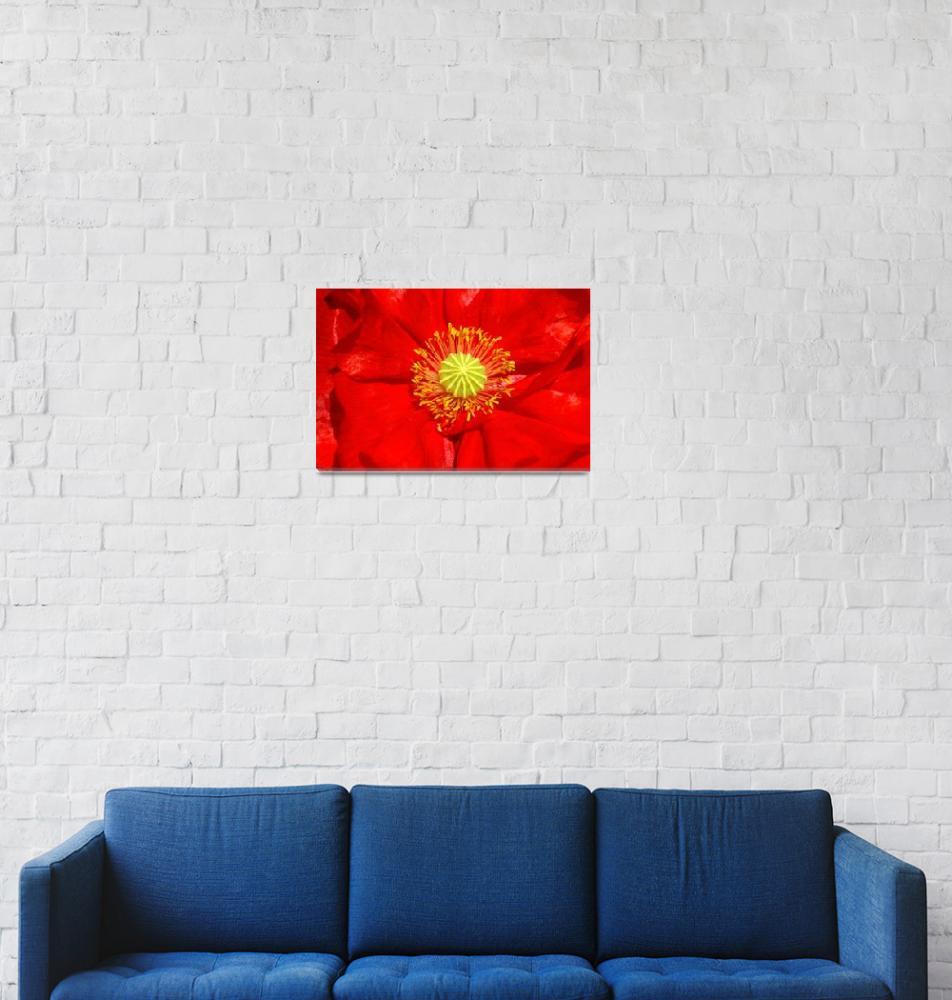 """Sunstroke""  (2008) by ispyimagination"