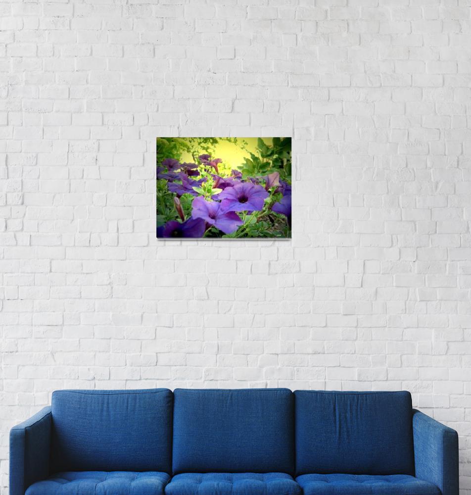 """purple flowers 2""  (2009) by micspics444"