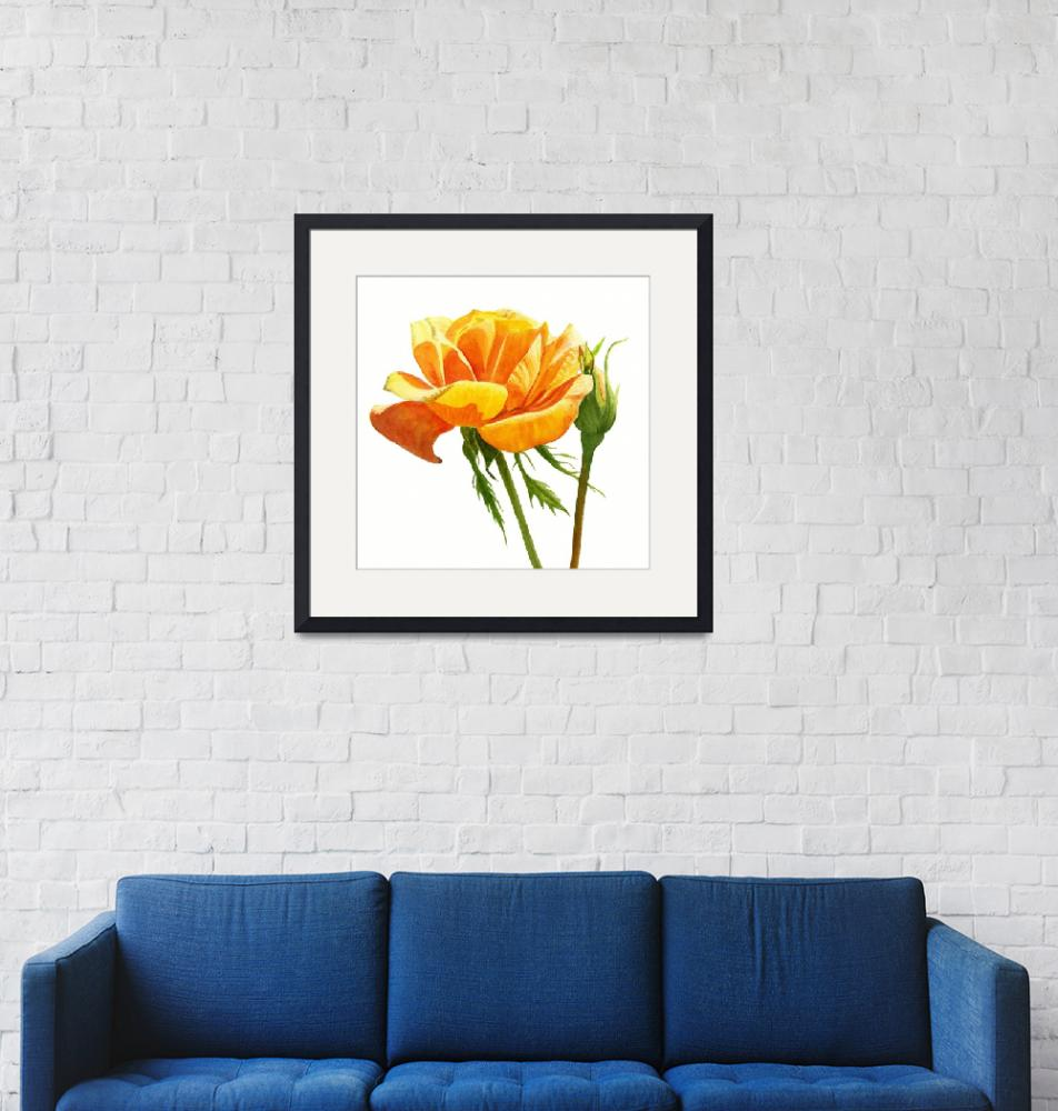 """""""Yellow Orange Rose square design""""  (2017) by Pacific-NW-Watercolors"""