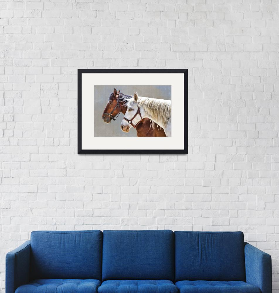 """""""Portrait of Two Horses""""  (2013) by JBentley"""
