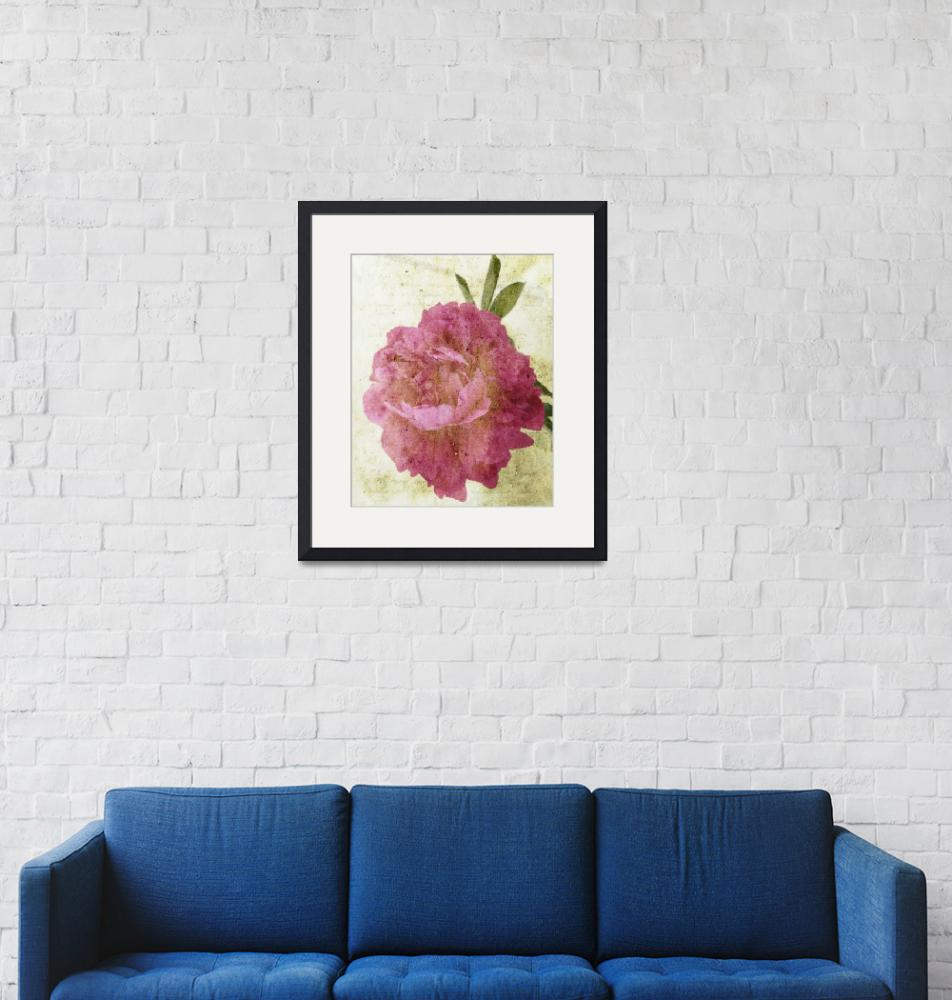 """Peony Variation 2""  (2011) by circe"