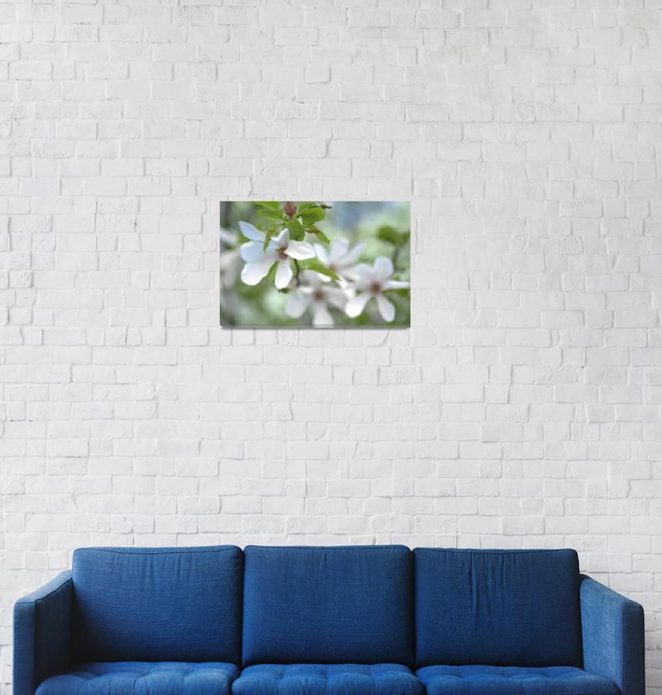 """Spring Vitality""  (2016) by JennyRainbow"