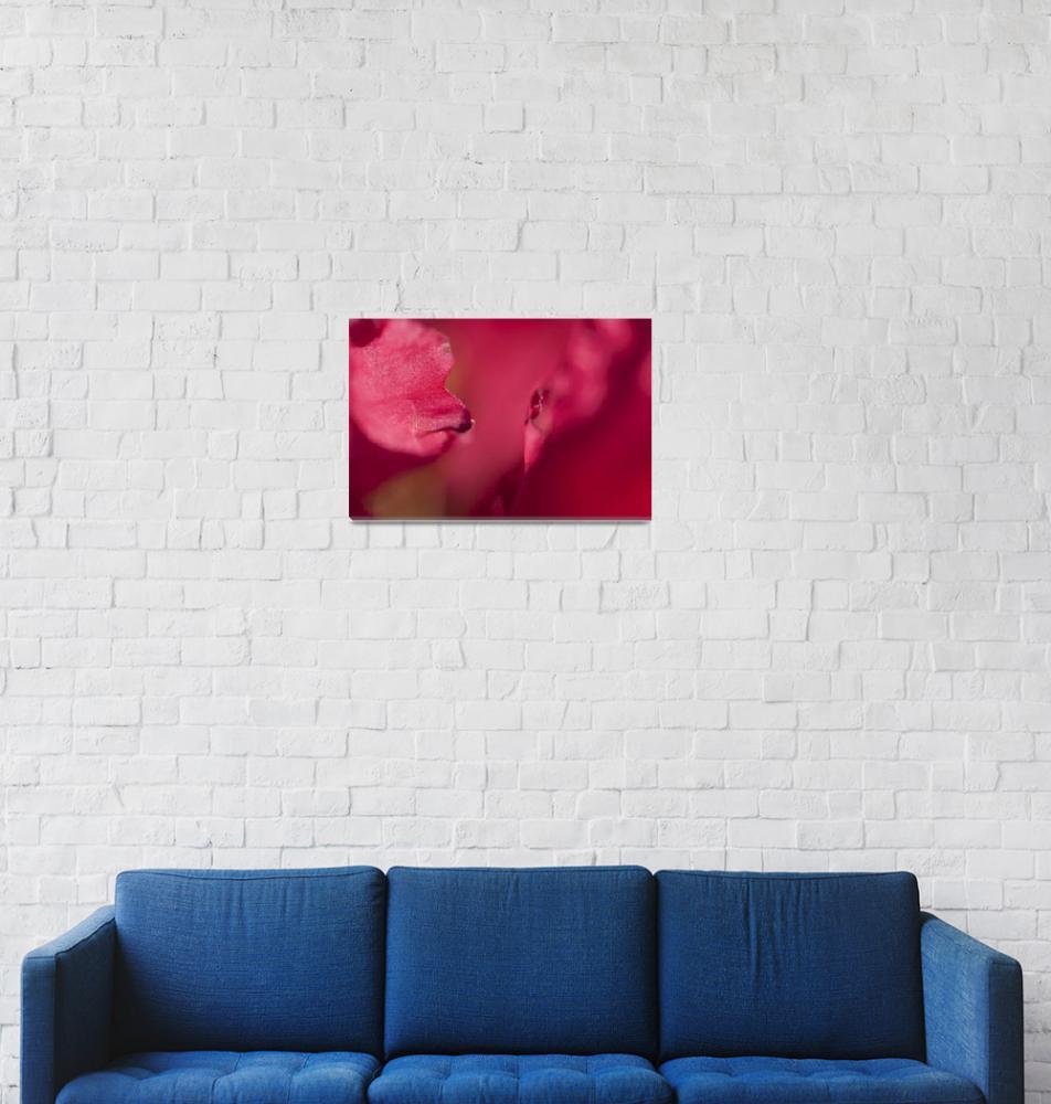"""Red""  by DierkHaasis"