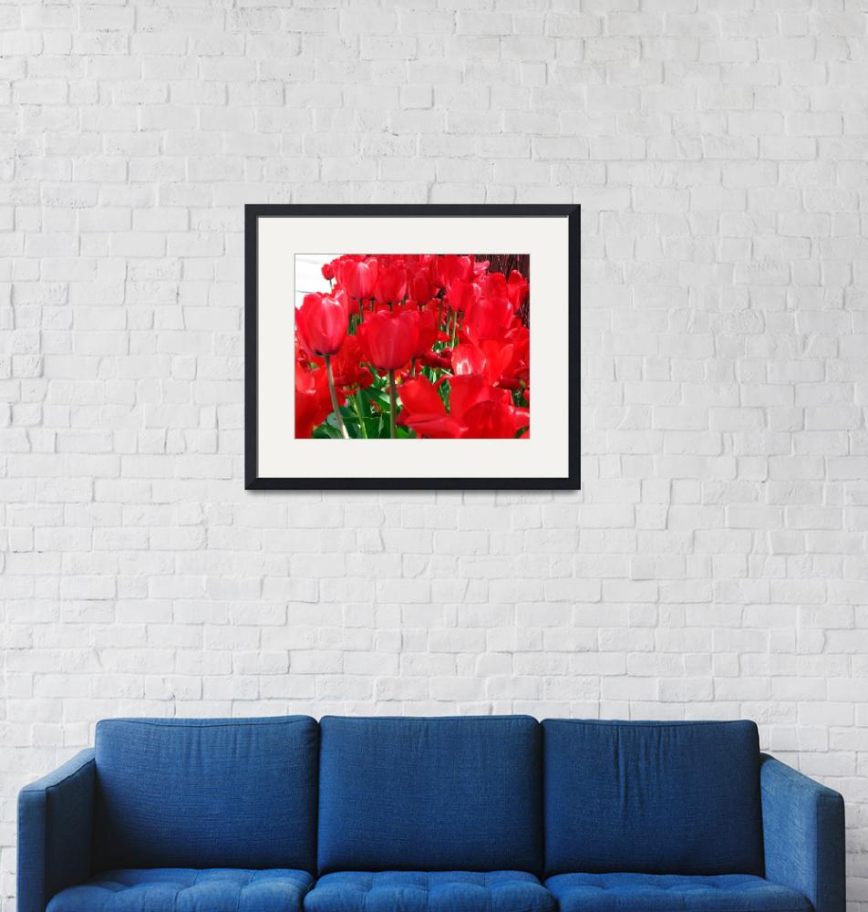 """""""Red Tulips""""  (2012) by AprilO"""