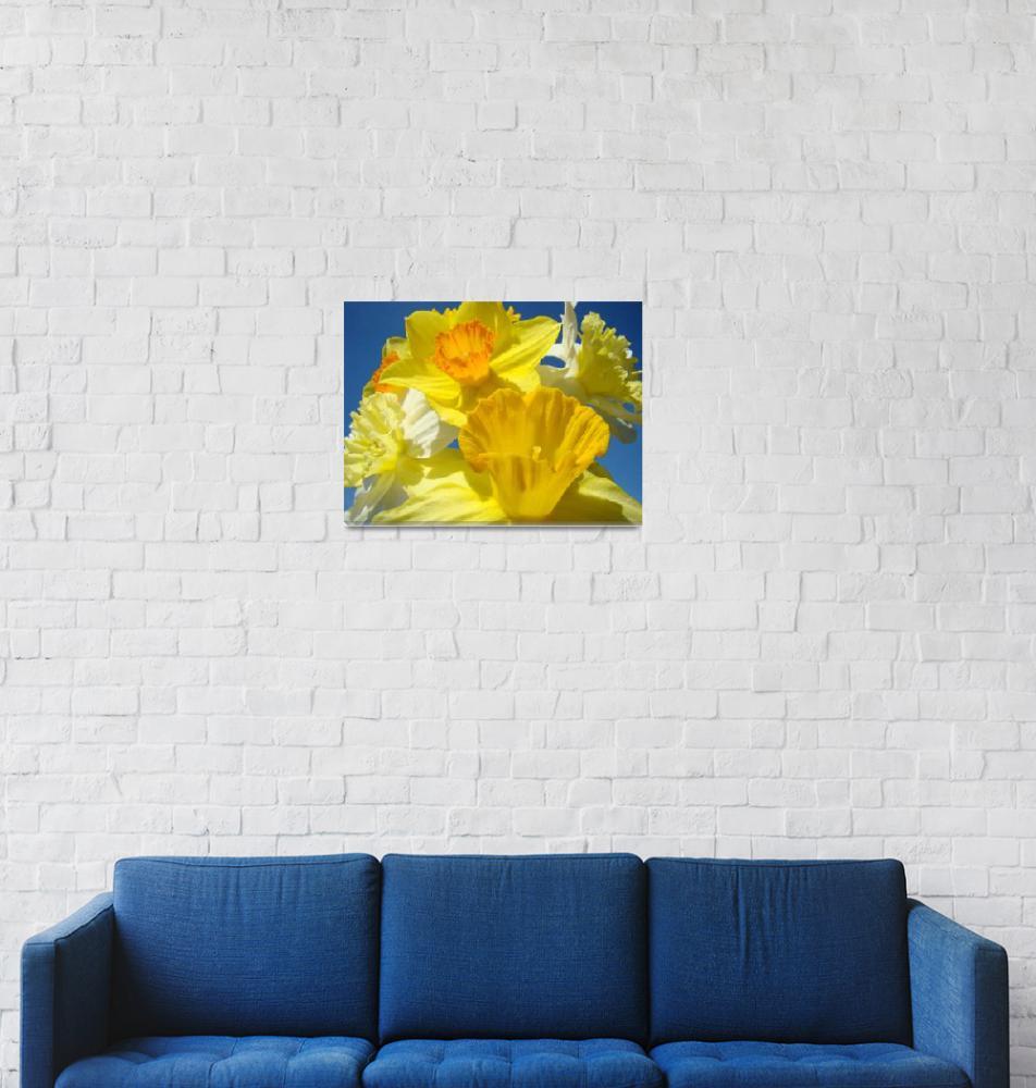 """Spring Daffodil Flower Bouquet Garden art""  (2011) by BasleeTroutman"