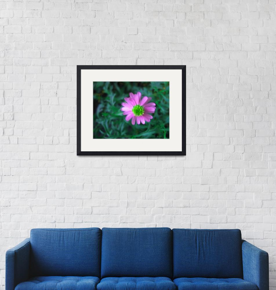 """""""Pink flower""""  by DonnaGrayson"""