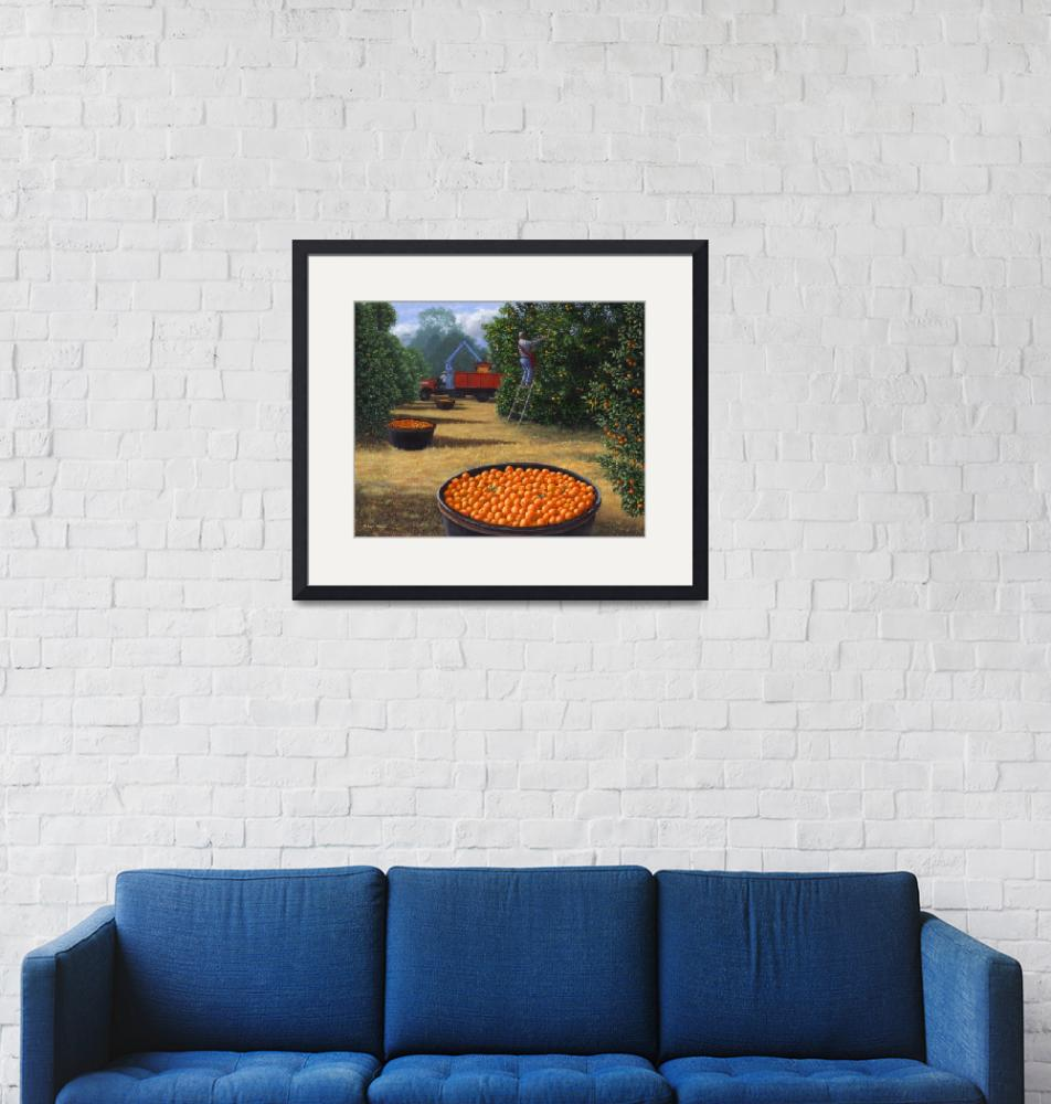 """""""Orange Harvest""""  (2008) by RobertWince"""