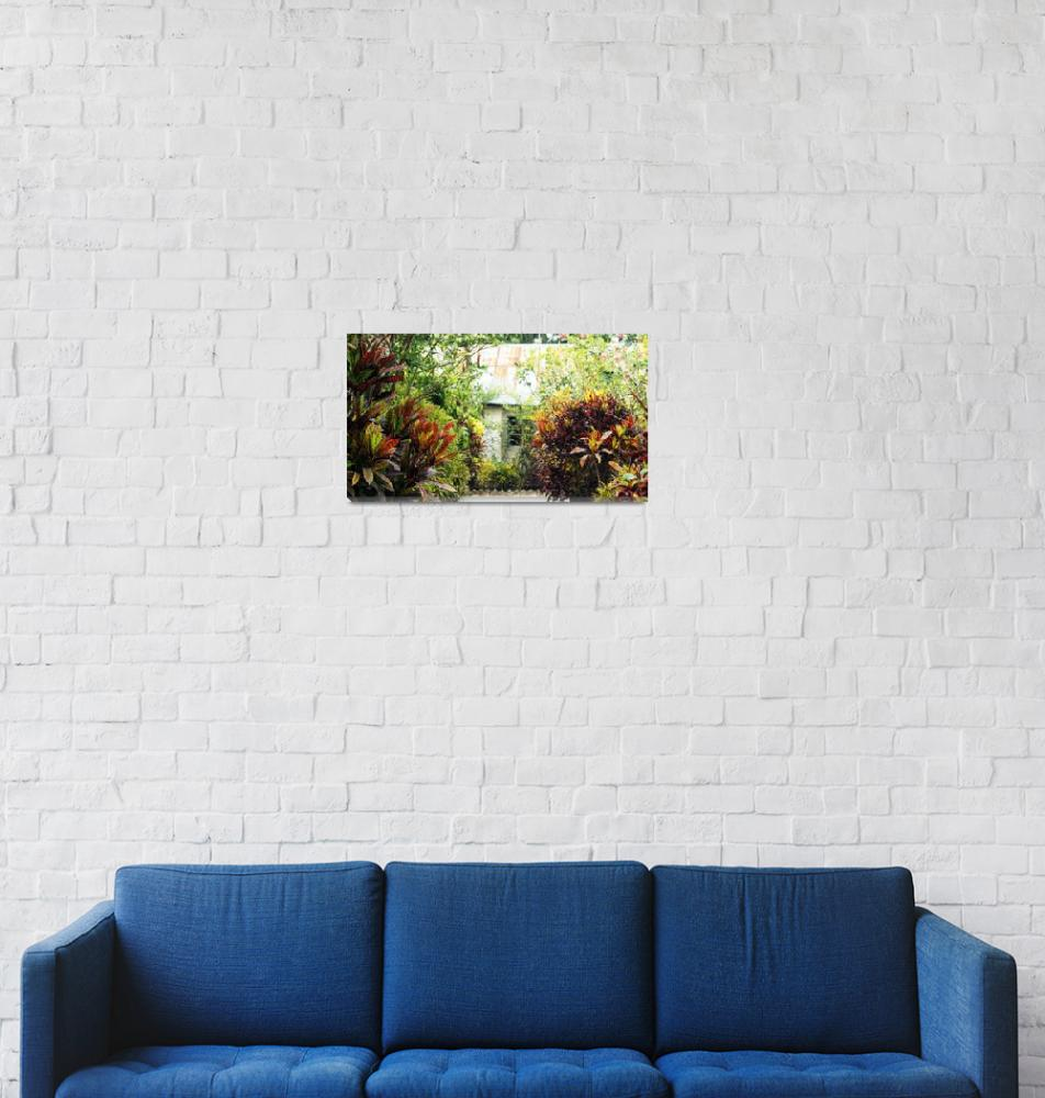"""Plants of Bangladesh""  (2012) by AlamgirKhan"