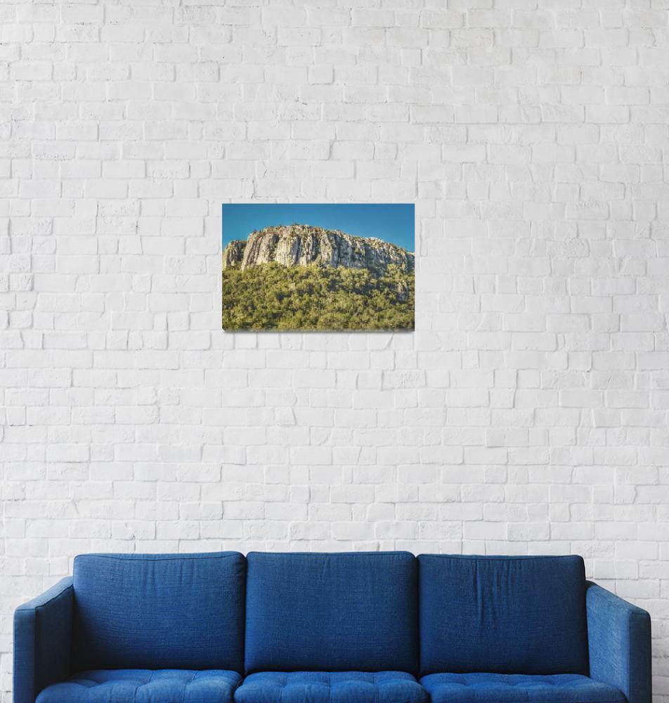 """Arequita National Park, Lavalleja, Uruguay""  (2020) by danfleitesart"