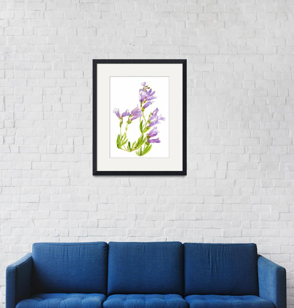 """lavender penstemon""  (2015) by Pacific-NW-Watercolors"
