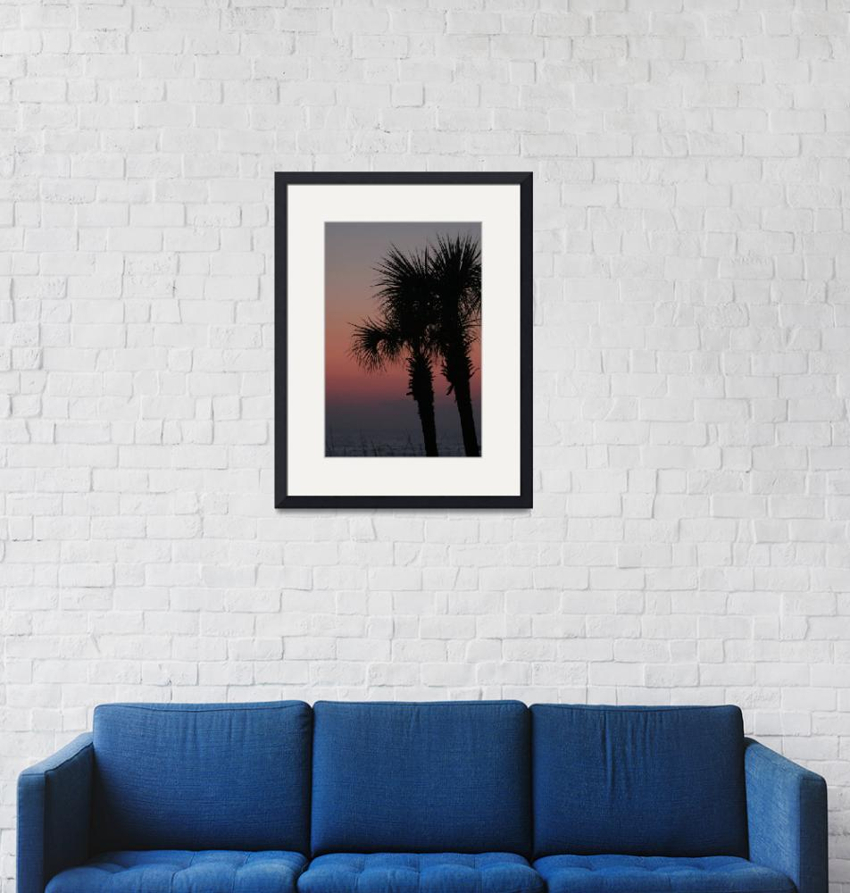 """""""Palms at sunset in Panama City Beach""""  (2007) by Ben_Nelson"""