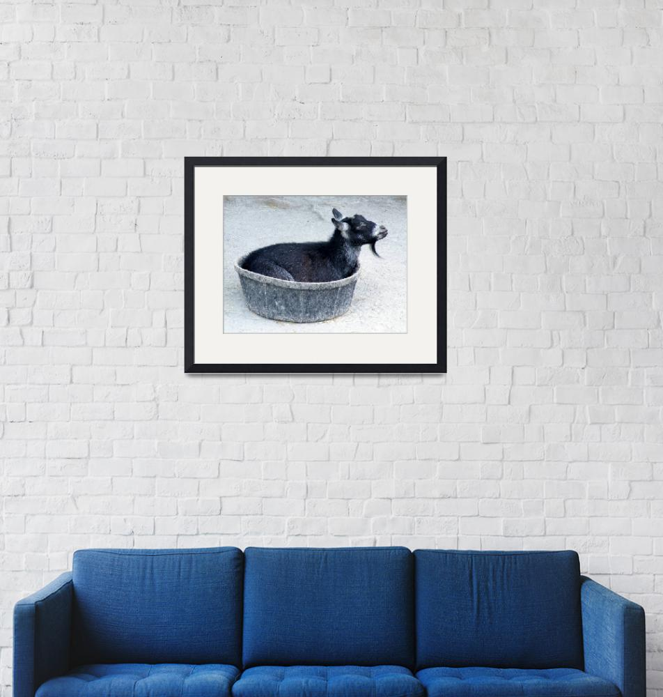 """""""A Bowl of Goat""""  (2009) by Kimmary"""