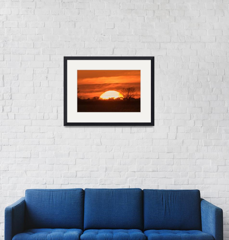 """""""New Years Day Sunset""""  (2017) by MatthewGriffiths"""