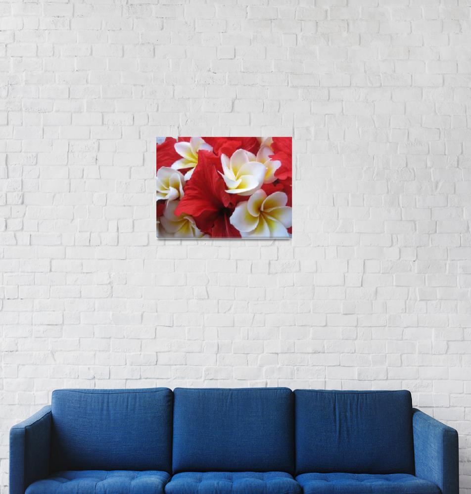 """""""Hibiscus""""  (2007) by cbaldridge"""