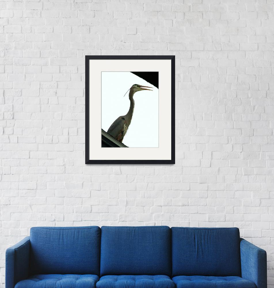 """Heron in the City""  (2012) by kcam"